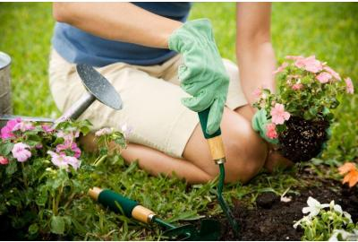How to Do Yard Work without Ruining Your Back