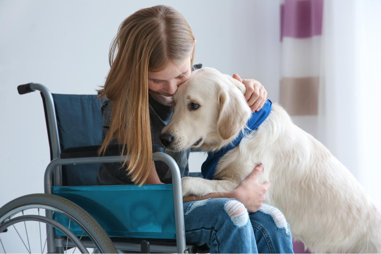 Lead a More Independent Life with a Service Dog