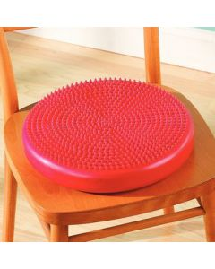 CanDo Balance Disc
