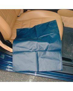 SafetySure CarEase