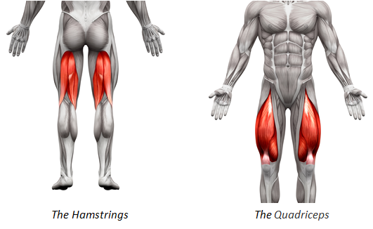 How to Treat Quad and Hamstring Strains | Performance Health