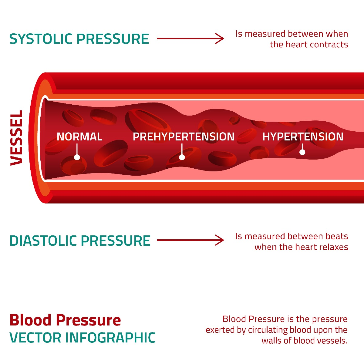 Infographic explaining the differences between systolic pressure and diastolic pressure